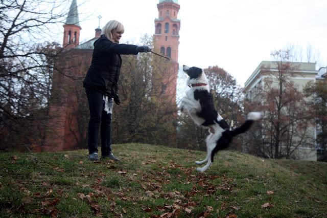 Spacer z psem w Warszawie. Czy to w ogóle możliwe?