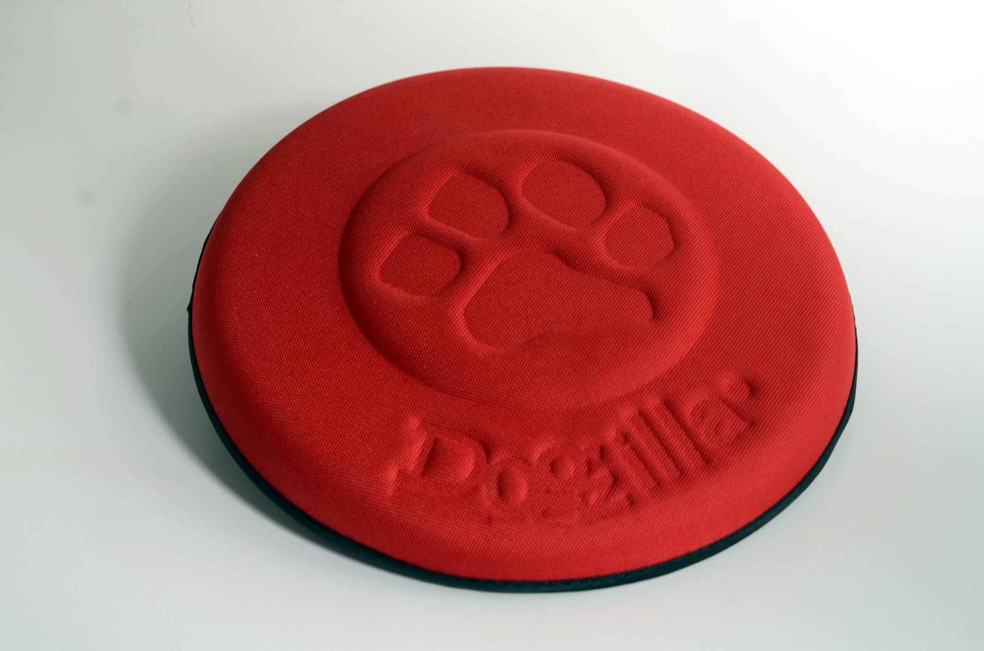 frisbee_dogzilla_1